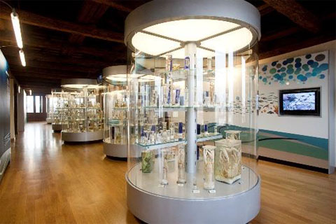 """Il museo Olivi propone attività online per celebrare la """"Giornata del mare"""""""